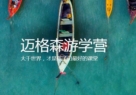 迈格森教育国际游学营项目
